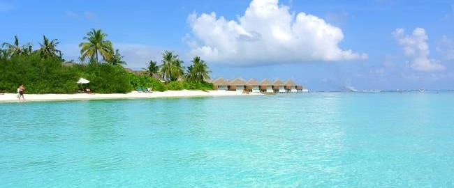 Travel Blog Website